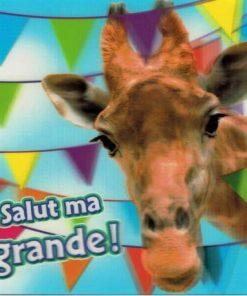 Carte Ze Souris - Salut ma grande!... - 15x15 cm