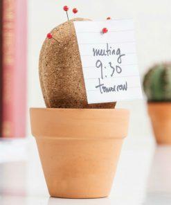 Plantez vos épingles dans ce cactus avec vos notes. Il sera très utile sur votre bureau pour ne rien oublier.