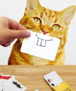 25 cartes différentes en papier recyclé pour faire des photos fun de votre chat !