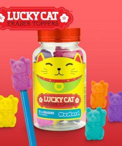 12 gommes colorées chat du bonheurSe fixent au bout de vos crayonsDesign cute et kawaï5 couleurs différentesDécorez et optimisez votre espace bureau !