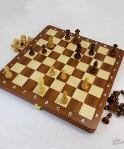 Pour jouer partout aux échecs sans faire une croix sur la qualité du jeu