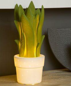 Cette lampe de table Aloé Vera en céramique sera idéale pour ajouter une ambiance chaleureuse et conviviale dans votre pièce.