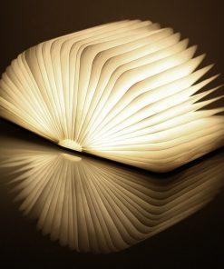 Ce livre lumineux effet bois sera parfait ajouter une jolie lampe de lecture insolite.Voilà de quoi plaire aux grands lecteurs.