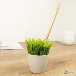 Un coin de verdure sur le bureau Pour tout type de stylo Porte aussi des photos !