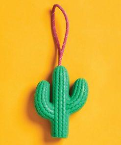 Cette savonnette a beau ressembler à un cactus