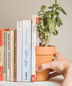 Invitez les plantes dans votre bibliothèques !