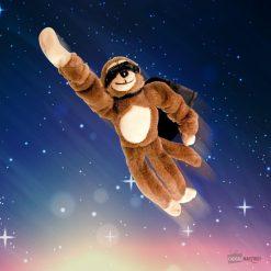Un singe super h&eacuteros