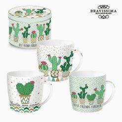 Tasse avec boîte Porcelaine Cactus by Bravissima Kitchen