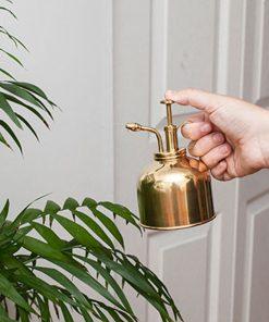 Prenez soin de vos plantesBrume délicateDécorez votre intérieur