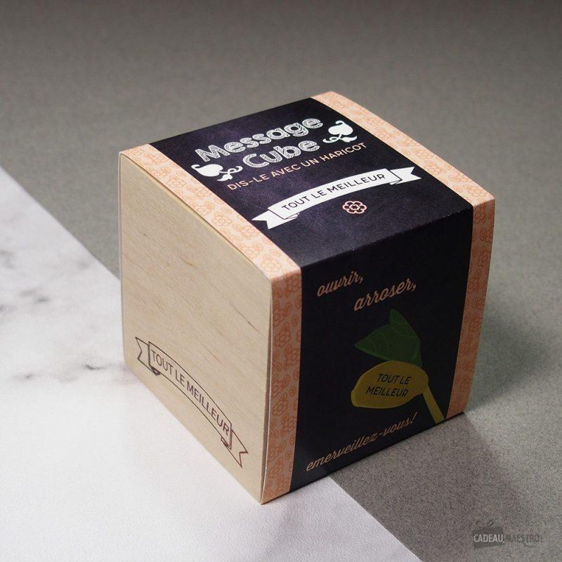 """Faîtes pousser un haricot gravé """"Tout le meilleur"""" au laser (Canavalia ensiformis) ! Instructions de plantation sur l'emballage en français."""